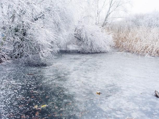 gefrorener Teich im Winter