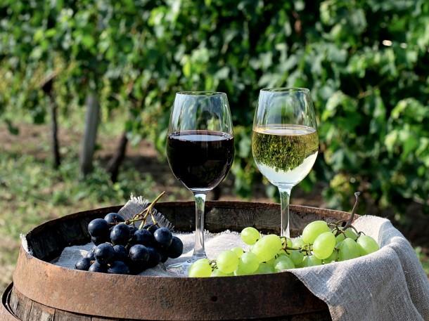 Wein genießen