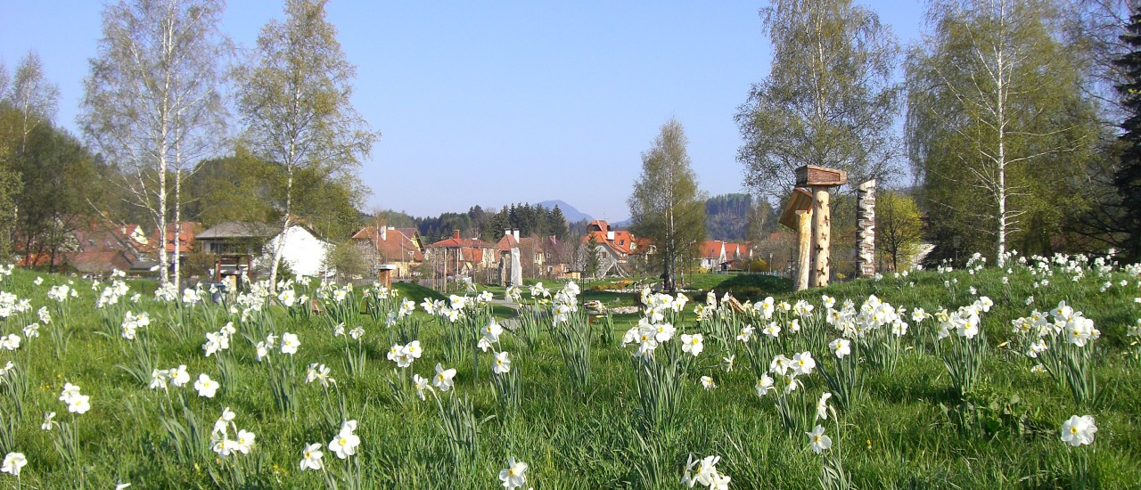 Frühling im NaturLesePark Neumarkt