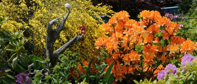 Frühling in den Hängenden Gärten der Sulamith