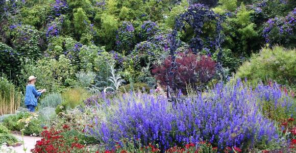 Kräutergarten, by Pamla J. Elsenberg, flickr.com