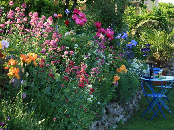 Iris, Hortensia Rose,(c) Renate Polz