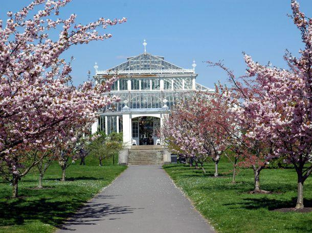 Viktorianisches Gewächshaus, Kew Gardens, England