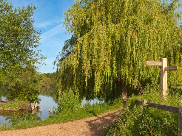 """Anton Lakes Local Nature Reserve in Andover, Hampshire"", © Anguskirk, https://creativecommons.org/licenses/by-nc-nd/2.0/"