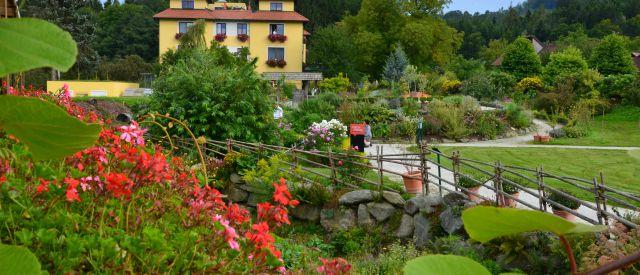 Sommer im Paradiesgart´l es Molzbachhofs (c) Molzbachhof