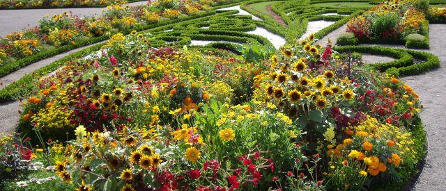 Sommer in den Gärten von Schloss Hof, (c) Schloss Hof