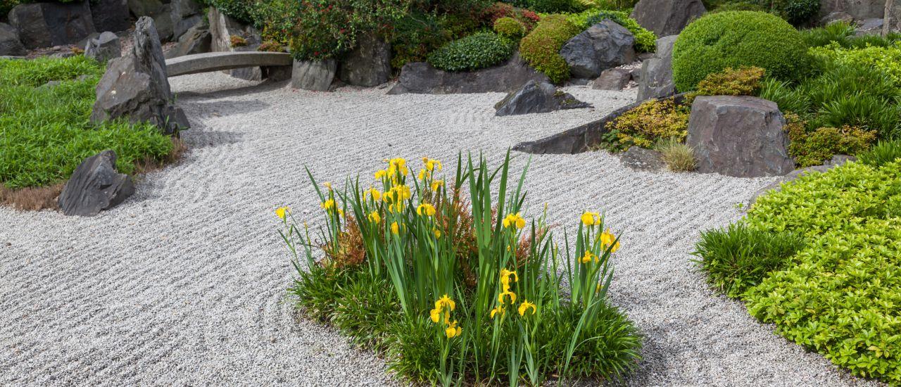 Bepflanzung im japanischen Garten, (c) Christian Mueller  Shutterstock.com