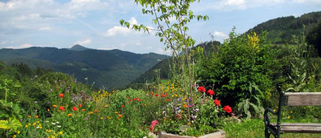 Sommer in den Steinschaler Naturgärten, (c) Steinschaler
